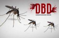 Antisipasi DBD Pemkot Kotamobagu Himbau Masyarakat terus Jaga Kebersihan