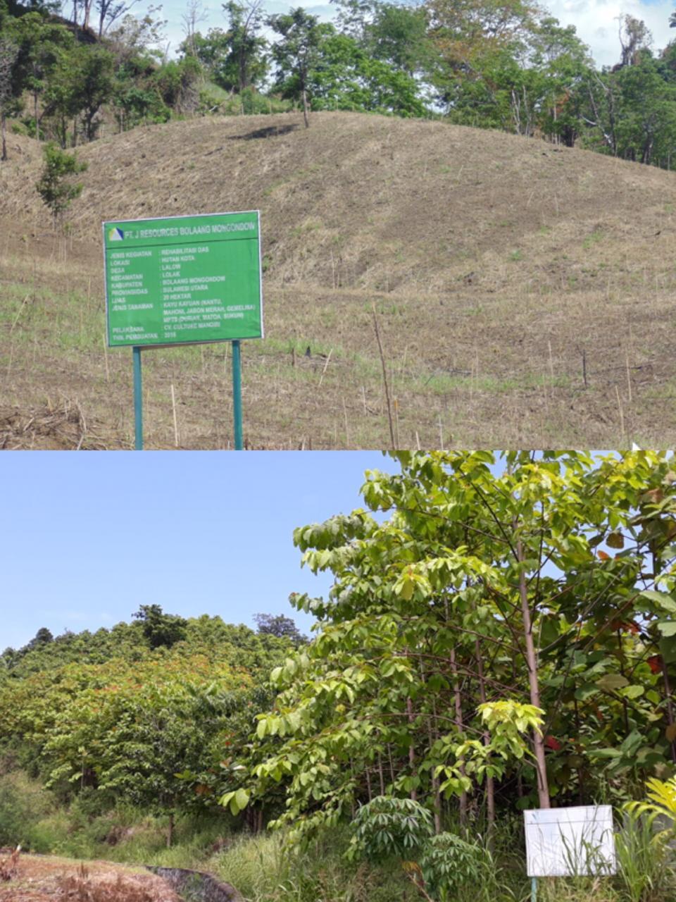 PT. J Resources Asia Pasifik Berhasil Lakukan Rehabilitasi DAS