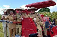 Bersama Gubernur Sulut Yasti Lakukan Panen Jagung dan Padi Sawah